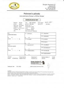Potvrzení o původu berana Berry - DE0010510510407 ARAWN