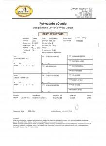 Potvrzení o původu berana Ringo DE010710197049 001